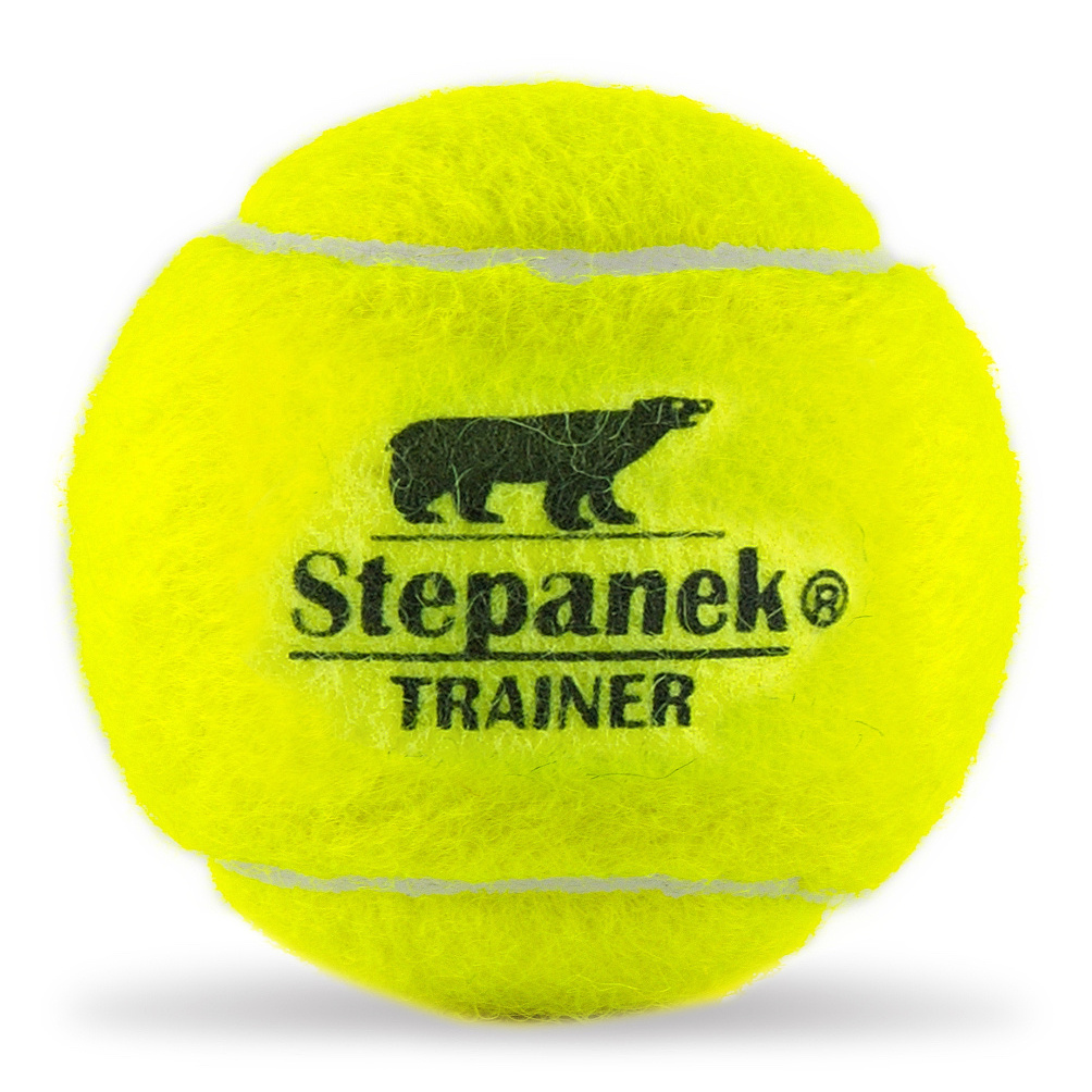 stepanek_trainer_1_web-crop